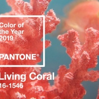 Pantone LIVING CORAL Natural & Organic Makeup Products + Look